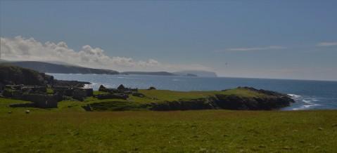 Shetland (111)