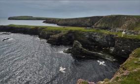 Shetland (113)