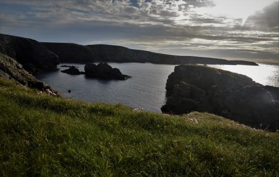 Shetland (117)