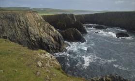 Shetland (125)