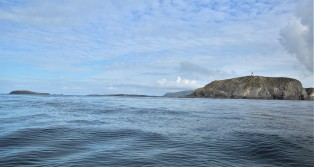 Shetland (132)
