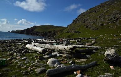 Shetland (19)
