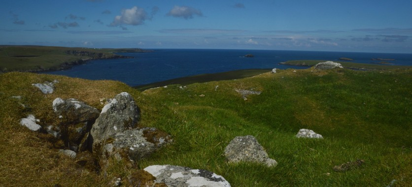 Shetland (22)