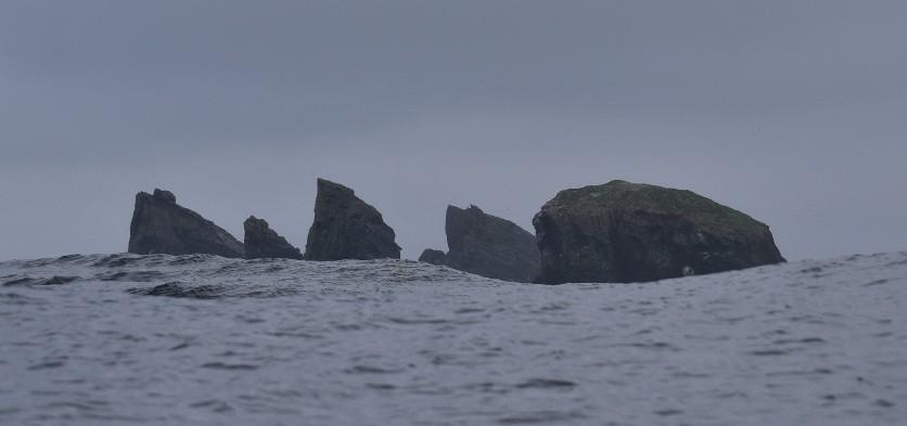 Shetland (27)