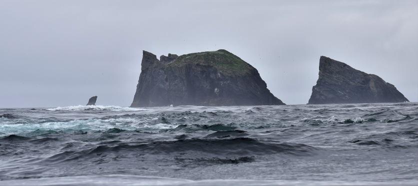 Shetland (29)
