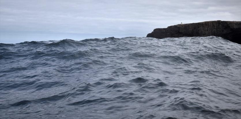 Shetland (43)