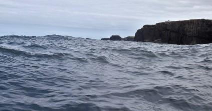 Shetland (44)