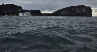 Shetland (45)