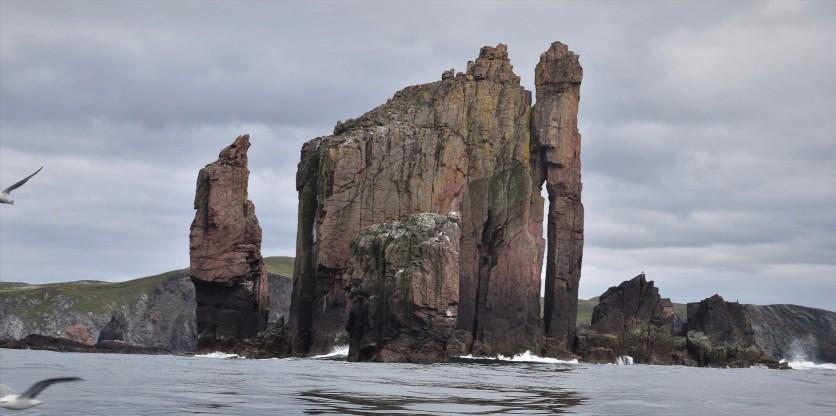 Shetland (51)