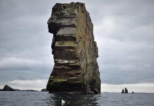 Shetland (54)