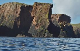 Shetland (62)
