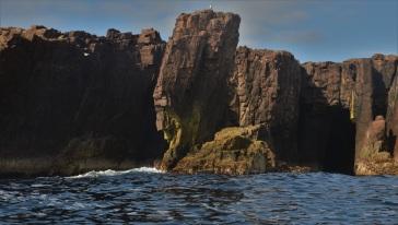 Shetland (69)