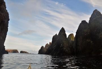 Shetland (90)