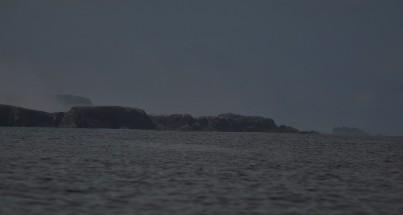 Shetland (99)